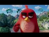 Бровястик...(Отрывок из мультфильма: Angry Birds в кино).