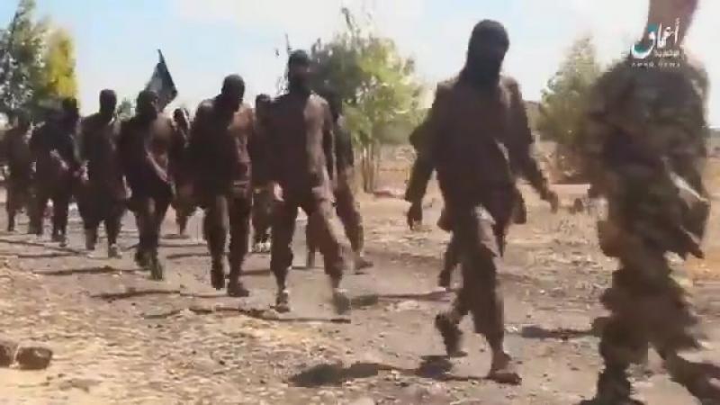 Daesh on the Israeli Golan border preparing for battle against SAA offensive.