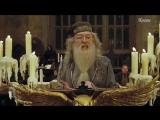 5 невероятных ТЕОРИЙ о Гарри Поттере