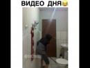 видео дня😅