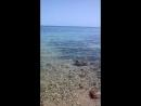 08.03.2018-13:00.Красное море. Хургада Египет
