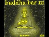 Talvin Singh - Veena ( Buddha Bar III - CD 2 - Joy )