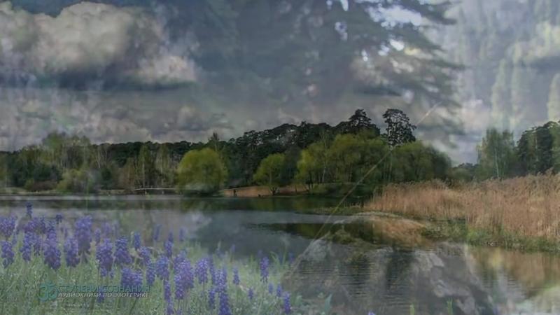 Направляемые медитации и целительные практики. Стивен Левин