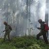 Общество добровольных лесных пожарных