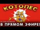 КОТОПЕС В ПРЯМОМ ЭФИРЕ | CatDog LIVE