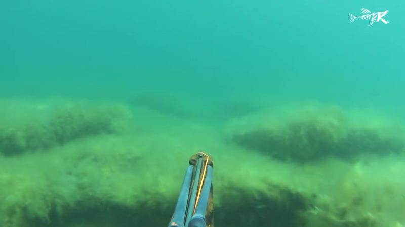 Подводная охота на кефаль - Казахстан - Мангистау - май 2016