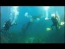 Подводная битва тороидами Игрушки дайверов