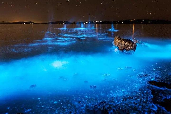 Мальдивы, красивейший светящийся пляж. (10 фото)