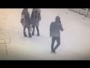 Педофил Казань