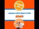 Москва! Даня - милый и ласковый котик! В добрые руки!