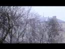 Метель Сильный Снегопад Зима Видео Метель Хлопья Снега