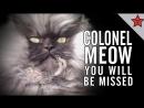 Полковник Мяу видео памяти R.I.P._COLONEL_MEOW 11.10.2011 - 29.01.2014
