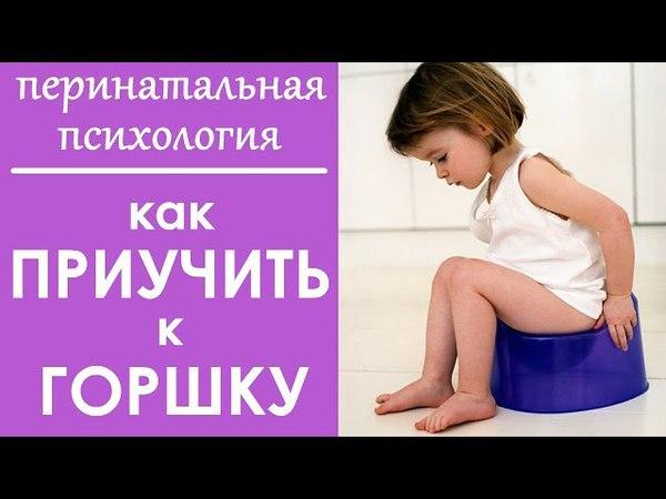 Выпуск 78 Как НАУЧИТЬ ходить на ГОРШОК Детская психология