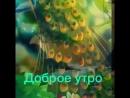 VID-20180722-WA0163.mp4