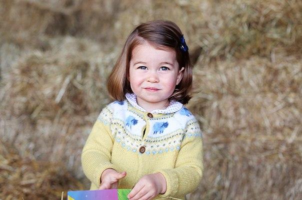 Принцесса Шарлотта идет в детский сад стоимостью 15 тысяч фунтов в год