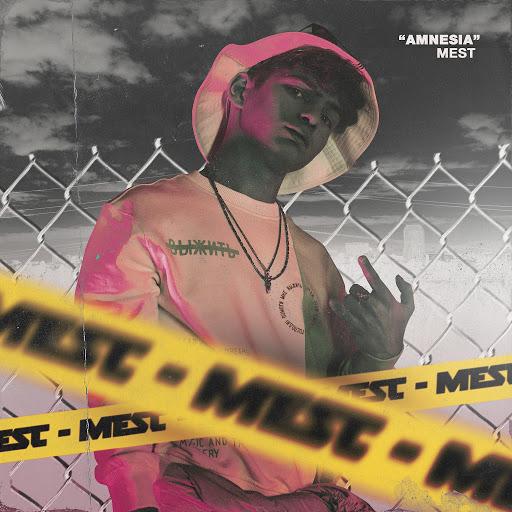 Mest альбом Amnesia