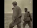 Отрывок из фильма Андрея Тарковского «Зеркало»
