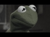 Kermit the Frog (Damaged Coda)