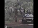 Появилось видео, на котором братья  Бессмертновы избивают сына главы ФНС