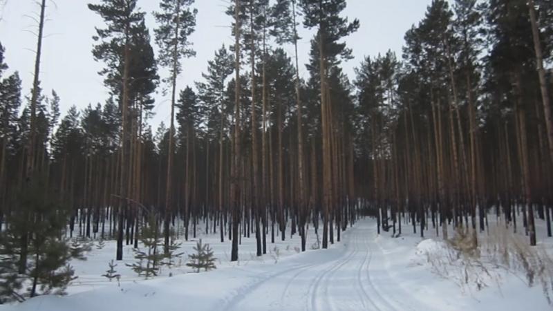 Открытое Первенство Заиграевского района по лыжным гонкам