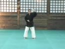Nunchaku training