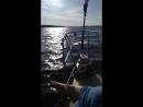 парнишки и чикули катаются на яхте