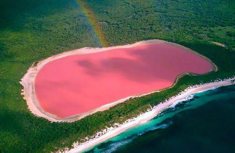 озеро хилер в австралии