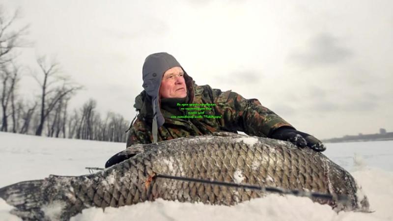 Fish Hungry Зимний активатор клева ВСЕГО за 99 рублей!🔥
