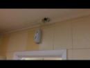 Внимание, вас снимают в туалете алтайского кафе ведут видеонаблюдение за посетителями