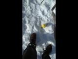 Урман и мяч