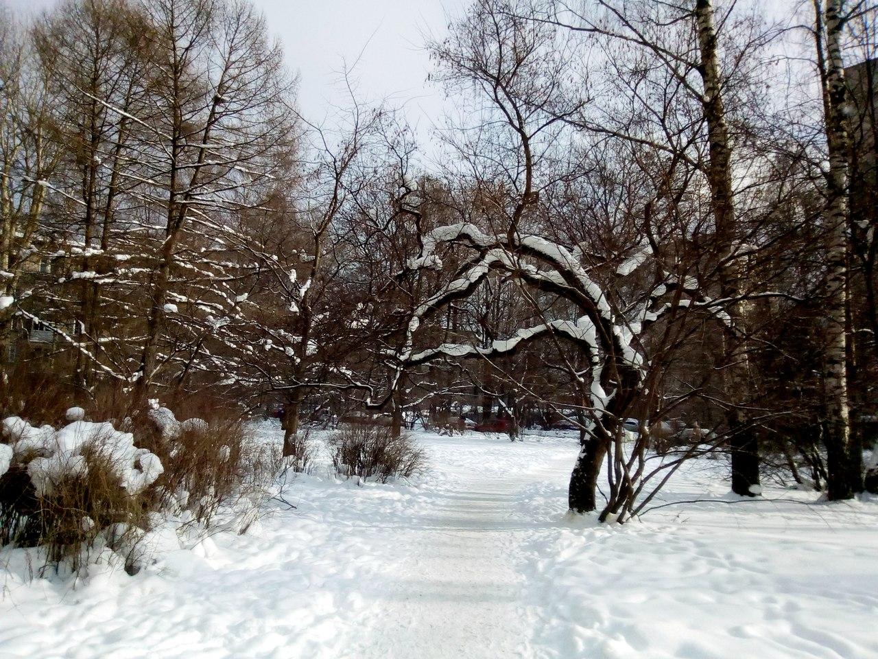 Красивый февраль в Петербурге. Мороз, солнце, голубое небо, красота! 8 фотографий