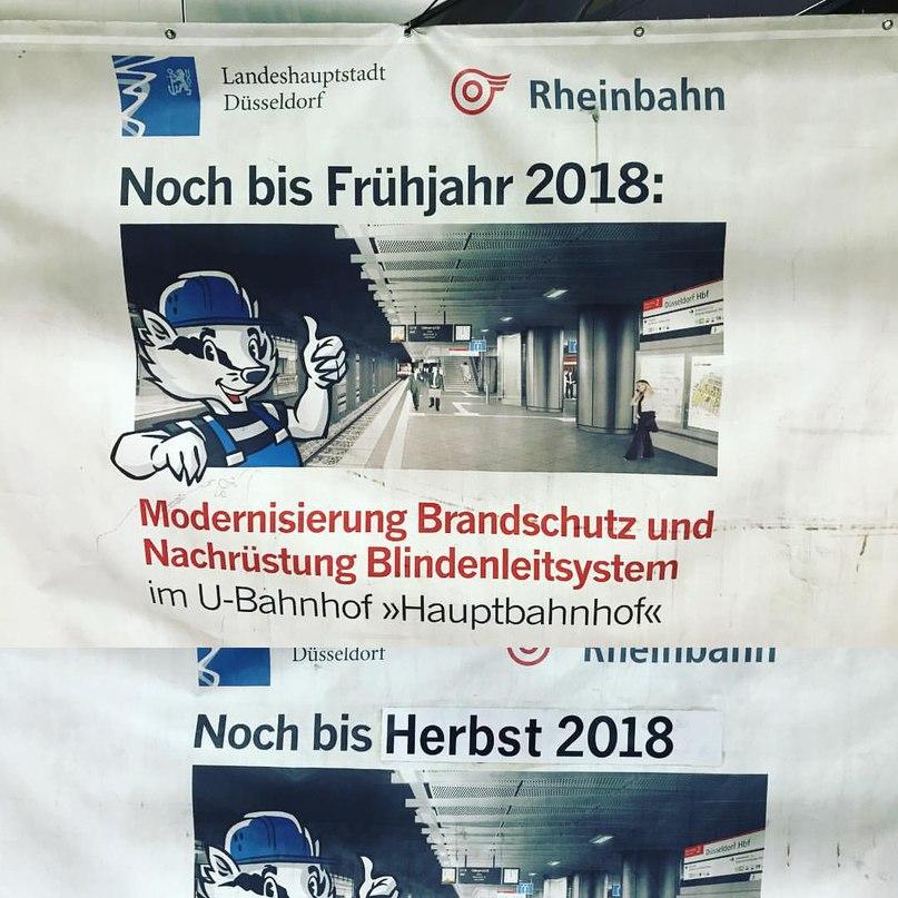 Alexander Scherer | Köln
