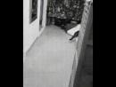 Когда остался ночью один дома и в дверь кто-то постучал .😸