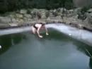 Жесткий прыжок бомбочкой в бассейн новые лучшие прикол самые смешное видео Фейлы fail коты девушки путин ржач новинки new 1005
