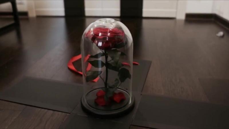 Шикарная испанская роза в колбе. Вау-коробка.Vertige