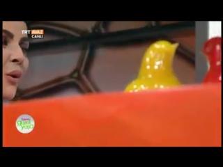 PAYLAŞIN TRT Avaz kanalında Azerbaycan yüreğimde bir şahdamardır şeiri