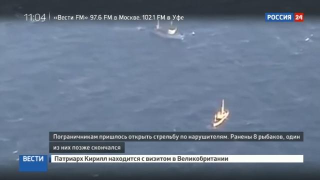 Новости на Россия 24 • Нападение северокорейских браконьеров власти КНДР хранят молчание