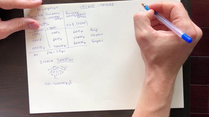 Маркетинг-план VILAVI – Tayga8. Как рассчитать свой чек?
