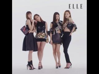 [vk] BLACKPINK, Taeyang, CL, Mino, Seungyoon @ ELLE KOREA x LOUIS VUITTON (April 2018)