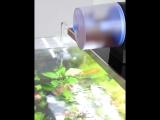 Brand New Timer Aquarium Fish Feeder