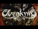 ELVENKING - The Solitaire (2015) official lyric video AFM Records