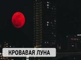 Сегодння в небе над Приморским краем кровавая луна!
