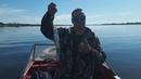 Ловля морской селедки в Днепре Рыбалка на пузанка Херсон сезон2018