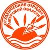 """Амурское региональное отделение МООО """"РСО"""""""