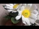 Заколочка с полевыми цветами
