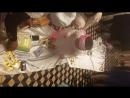 Тусау кесер Багымка балапан ешкайссын тандамады сосын мен артынан шын журектен ул ергенин тилеп машинаны алдына берип ем машинк