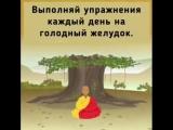 Тибетские упражнения для долгой жизни