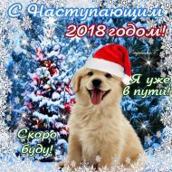 С Новым годом!Годом собаки!