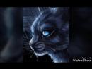Коты-Воители Синяя звезда