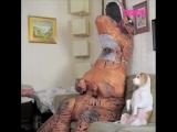 Собака и динозавр